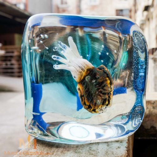 glass cuttlefish sculpture